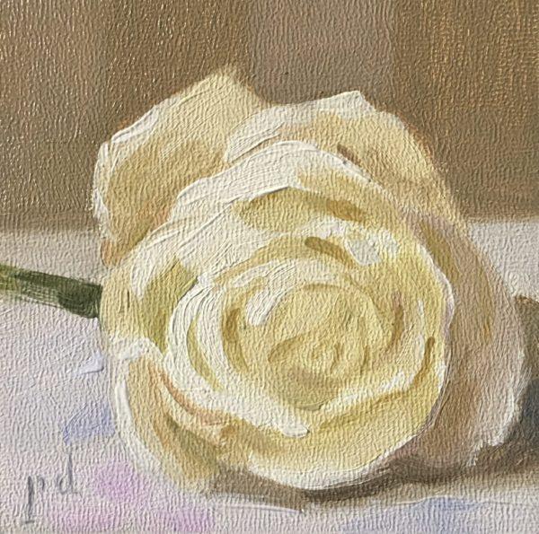 White Yellowy Rose