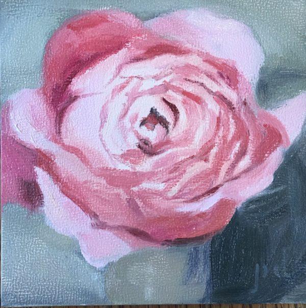 Crimson Rose 2017
