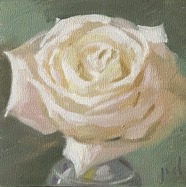 White Rose in Green