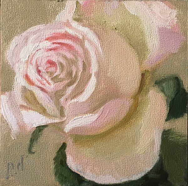 Pink Rose 2017