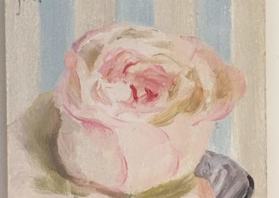 Pearly Rose